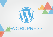 Guide per la piattaforma WordPress